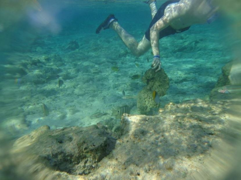 Giftun Island and snorkeling from el Gouna