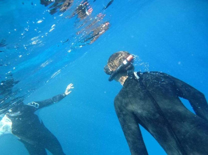Schnorchelausflug zur Insel Tiran ab Sharm El Sheikh