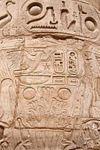 Half-day trip to East Bank of Luxor&Karnak Tempel&Luxor Tempel