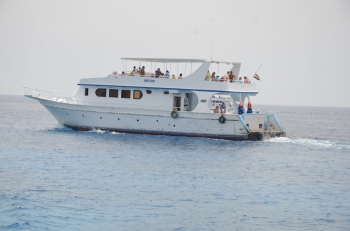 shore excursions from Port of Sokhna