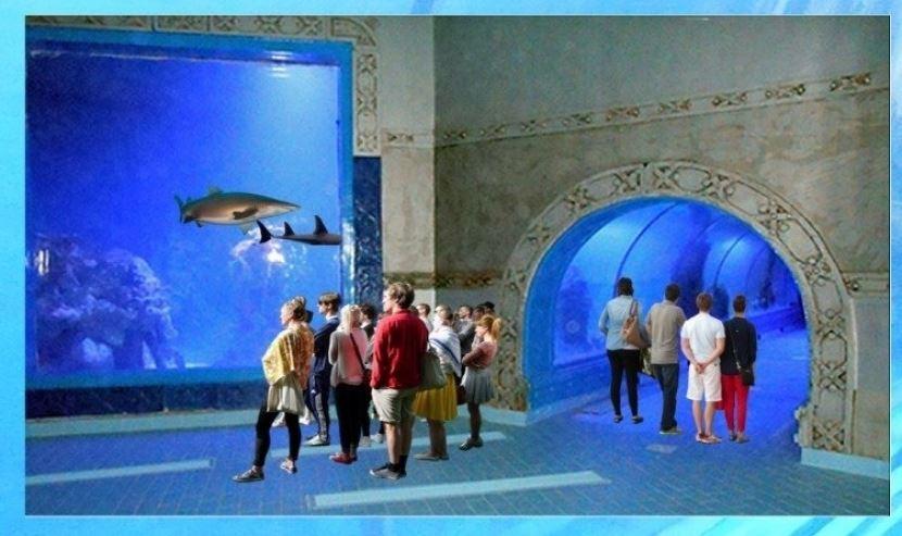 Ausflug zum Grand Aquaruim Hurghada